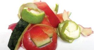 vỏ trái cây