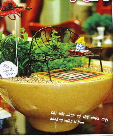 Vườn tí hon