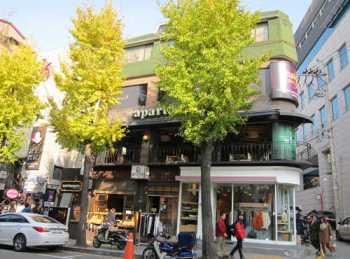 Cây bạch quả được trồng khá phổ biến trên đường phố Seoul. Ảnh: Parksihoo4u.com.
