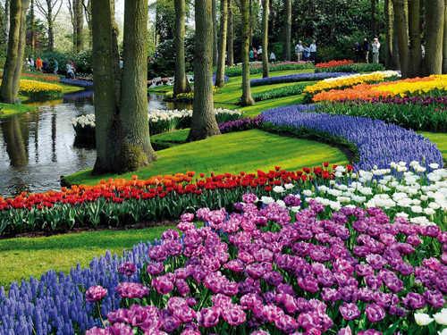Bạn có thể đi dạo bằng xe đạp trong công viên trong lành và ngát hương hoa. Ảnh: Natali.