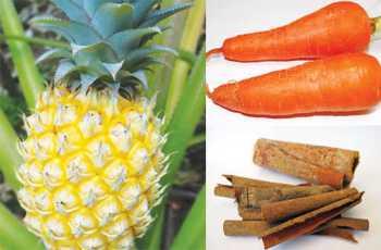 """Quả thơm, cà rốt, quế... có thể giúp """"đốt"""" mỡ thừa - Ảnh: Đ.N.Thạch - Minh Khôi"""