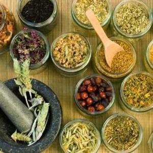 Có rất nhiều loại thảo dược có tác dụng giải độc cho gan