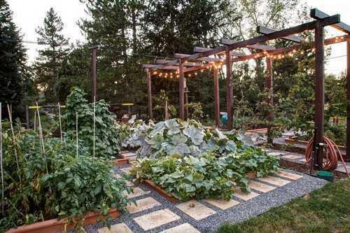 """Vườn rau với dàn gỗ cho cây leo. Những cọc gỗ góc vườn có tác dụng giữ cho những loại cây rau lớn hay thân mềm dễ gãy có thể đứng thẳng và không mọc """"lấn sân"""" sang khu vực khác."""