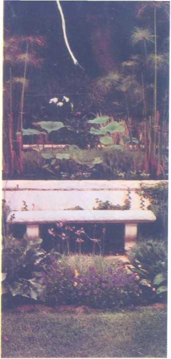 Hồ nghi thức xây nối theo truyền thống cổ trong các khu vườn xưa