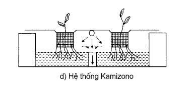 Hệ thống Kamizono