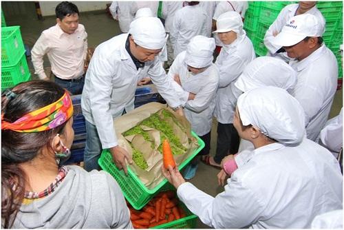 MM Mega Market tạo được vùng nguyên liệu an toàn cung cấp cho toàn bộ hệ thống hơn 11.000 tấn rau củ quả mỗi năm.