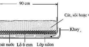 Hình 3.3. Mặt cắt khay trồng