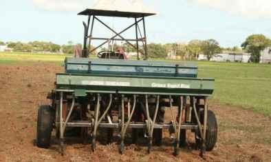 Dùng máy bỏ hạt giống chính xác (precision seed drill) là cách lýtưởng để trồng cây phân xanh.