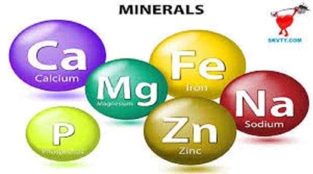Những loại khoáng chất đa lượng cần thiết trong phân bón hoa hồng