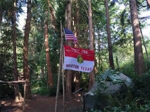 Troop 266 flag