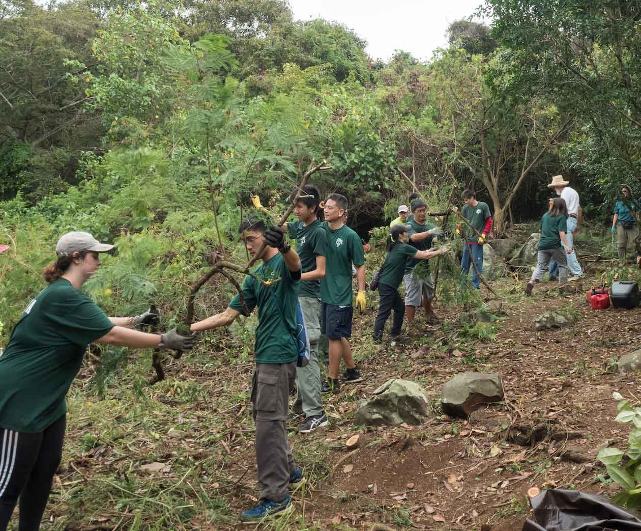 About Troop 33 Manoa Scouting Hawaii
