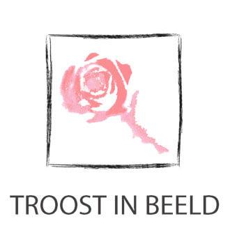 Logo Troost in Beeld