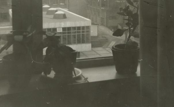 foto Uitzicht vanuit onze slaapkamer op het lijkenhuisje!