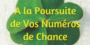 Découvrez vos Numéros et votre Potentiel de Chance