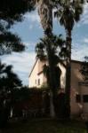 Casa-appartanmenti per vacanze a Tropea Di Tocco 1.JPG