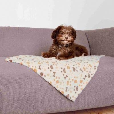 Trixie Lingo Hundeteppe