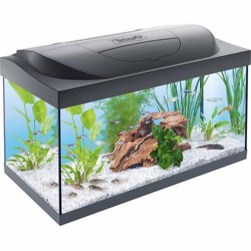 Tetra startersett akvarium