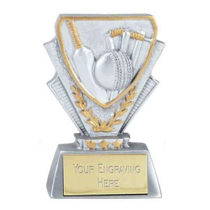 Kids Cricket Trophies