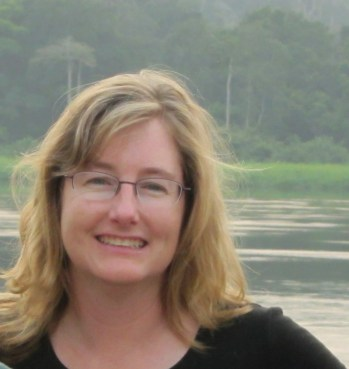 Lisa Davenport, Council 2015-2017