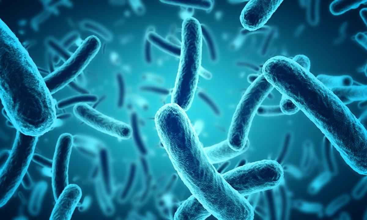 Microscopic,Blue,Bacteria