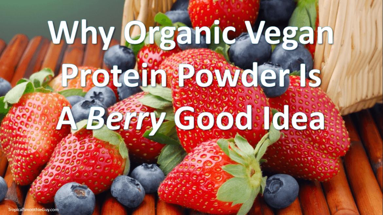 Organic Vegan Protein Powder