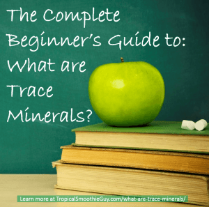 What are trace minerals
