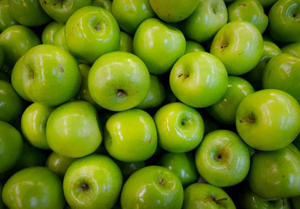 A PILE OF SHINY GREEN APPLES FILLS THE FRAME.