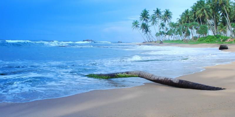 Sri Lanka with Tropical Warehouse