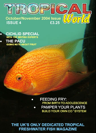 Tropical World Magazine cover