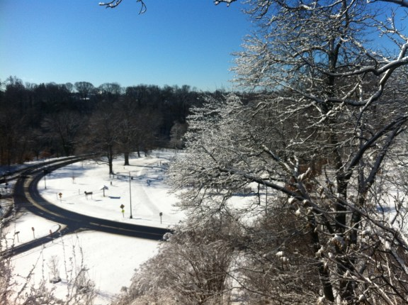 "I went to the AHA in DC, and all I got was ""dangerously low temperatures"""