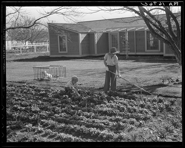 'We simply tried to create an intensely practical environment for 100 fine families.' Ross H. Gast | Photo by Dorothea Lange. Courtesy of Library of Congress, Prints & Photographs Division, FSA/OWI Collection, LC-USF34-001676