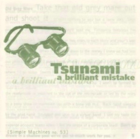 tsunami a brilliant mistake