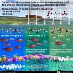 Teaching Module: Climate Refugees