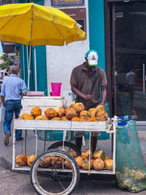 coconut street vendor in cartagena colombia