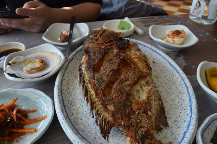 Busan fish market 010