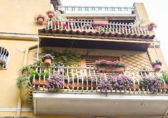 WE Ludivine (Ragusa, Modica,Taormina) 431