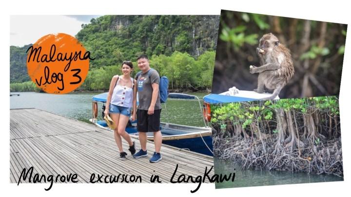 Vlog 3 in Malaysia – Mangrove excursion in Langkawi.