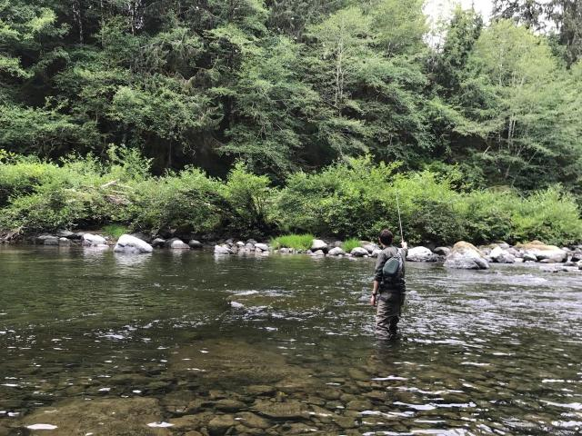 Tightlining, fly fishing