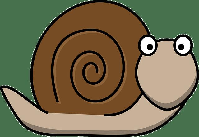Come velocizzare un sito PHP (Guide, Guide PHP)