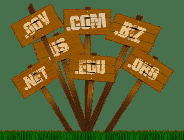 Si possono registrare domini per più di 10 anni? (Guide, Mondo Domini)