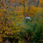 Fall_colors_Owen_Sound_2004-10-1508