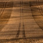 farm_fields__20100405_56_7_8