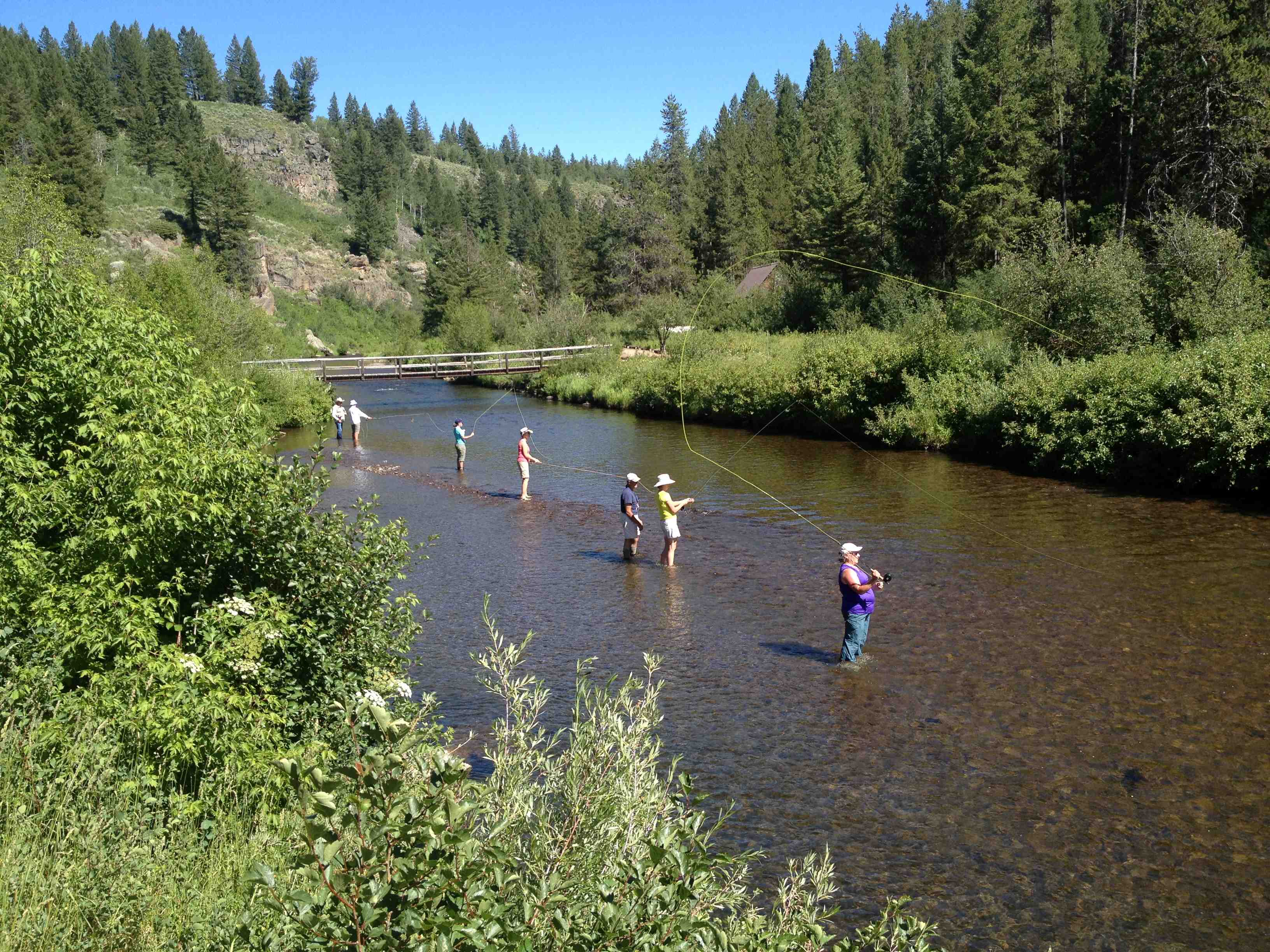 Fly fishing 101 class in idaho learn how to fly fish for for South fork snake river fishing report
