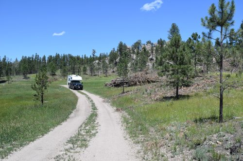 Exploring a Forest Road in the Black Hills - Truck Camper Adventure