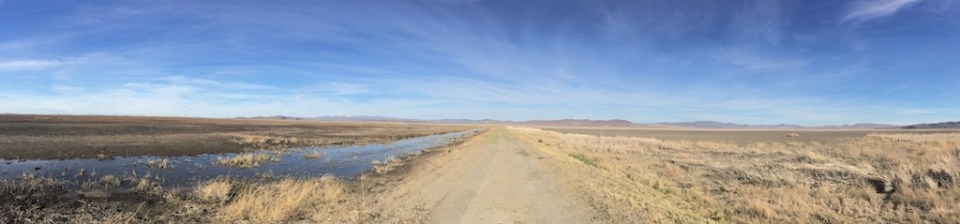 A narrow strip of water is all that remains of the wetlands at Carson Lake and Pasture in Lahontan Valley in April 2015.