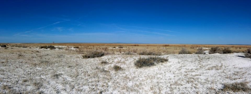 Stillwater National Wildlife Refuge had little water in late winter 2015.