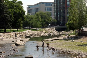 Truckee River downtown
