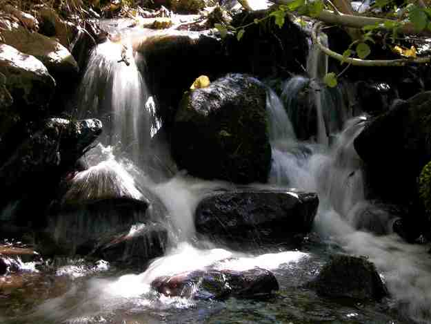 Whites Creek flows from the top of Mt Rose and naturally would end in Steamboat Creek.