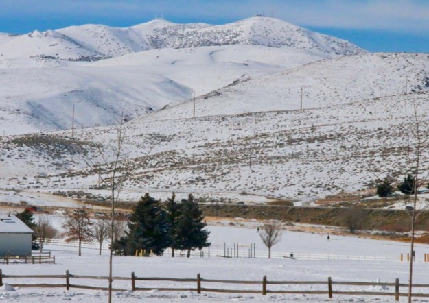 Peavine Mtn from Rancho San Rafael in Reno mid-February '19