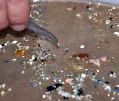 Microplastics-UC-Santa-Barbara-Image